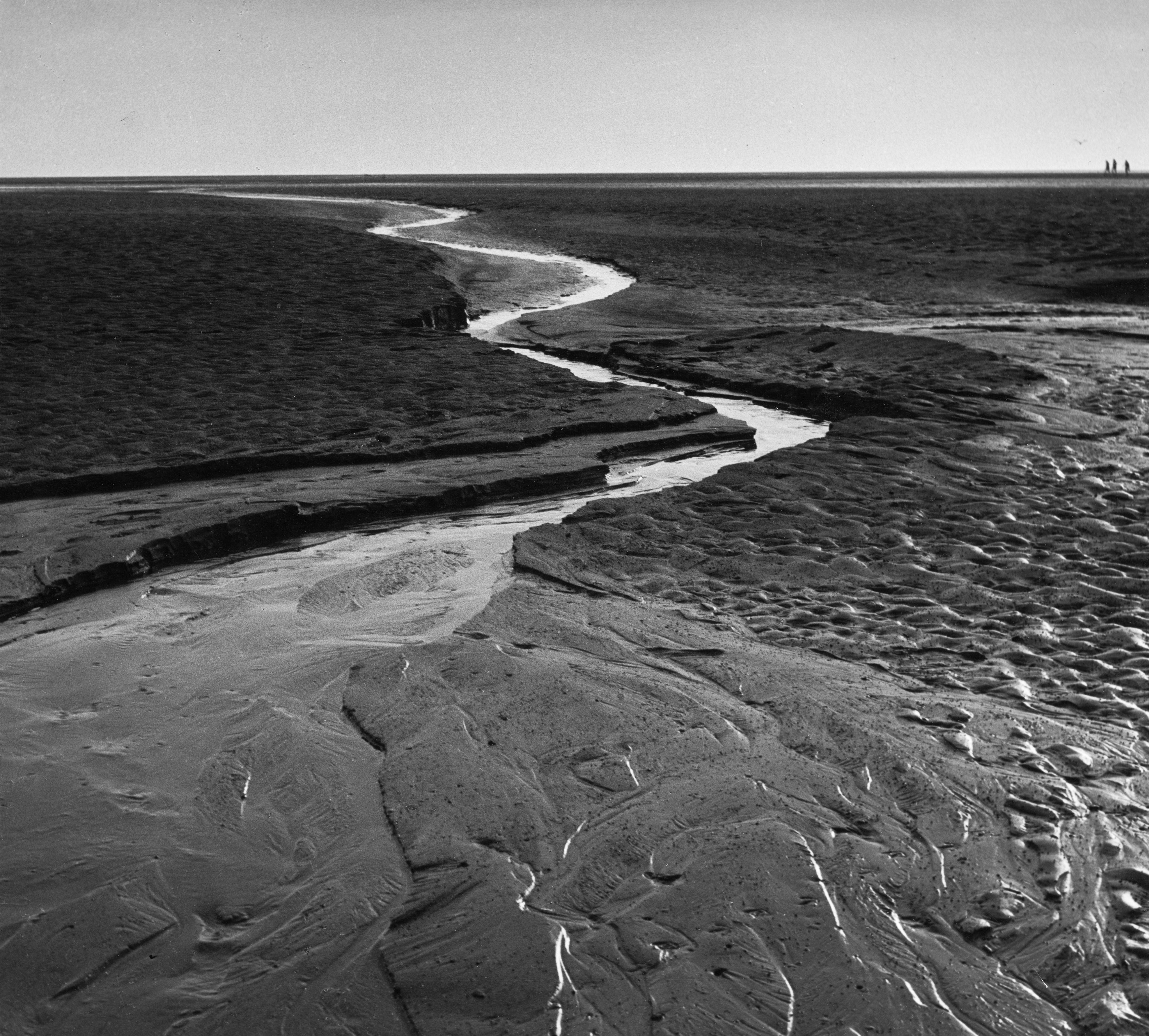 Alfred Ehrhardt: Watt-Fotografien der 1930er Jahre  - Sonderausstellung im UNESCO Weltnaturerbe Wattenmeer-Besucherzentrum Cuxhaven