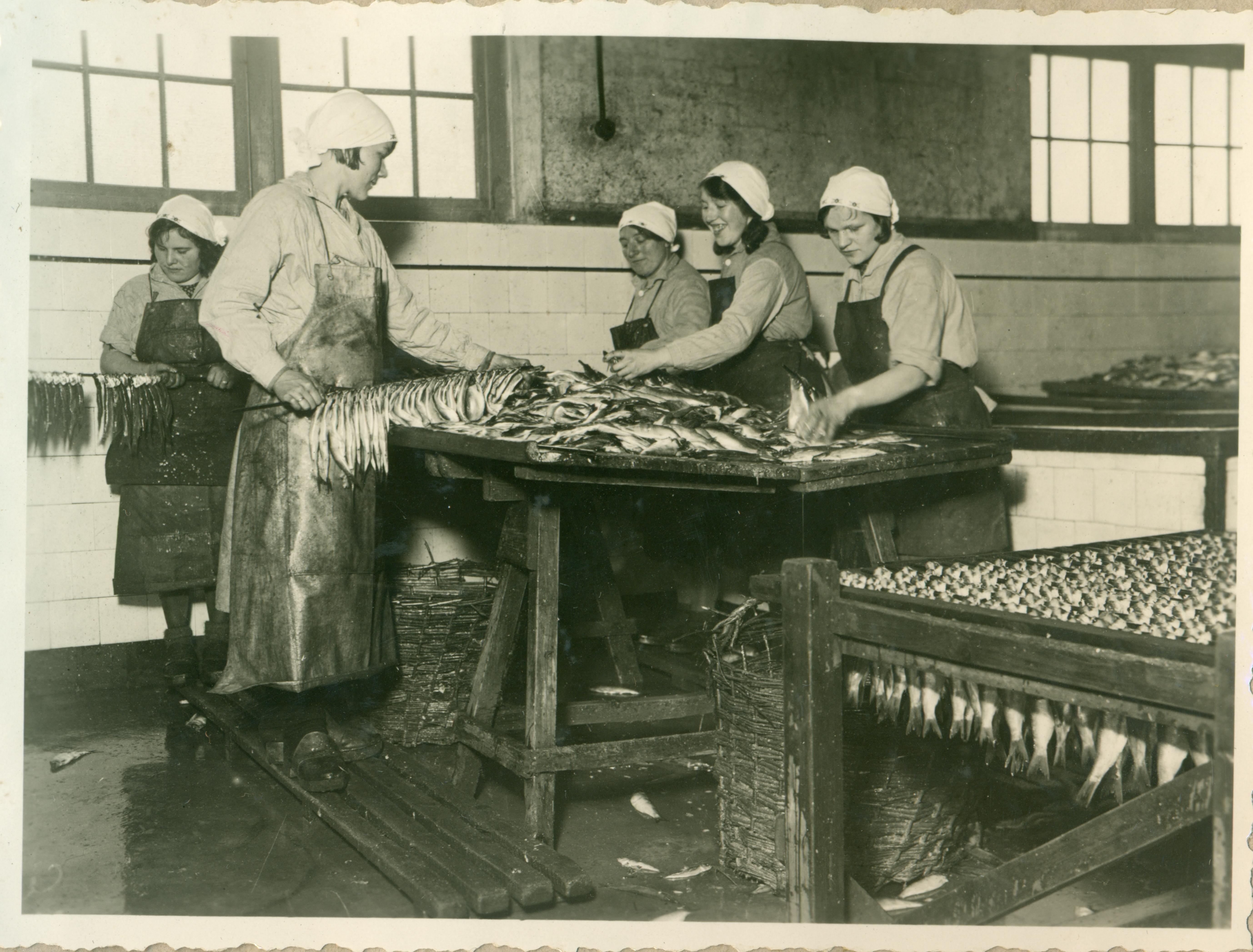 Cuxhaven und der Fisch - Führung durch die Ausstellung in