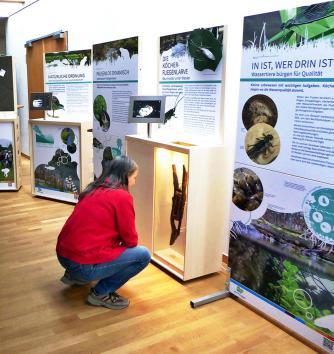 Ausstellung Gewässer