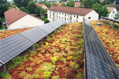 Photovoltaik und Dachbegrünung