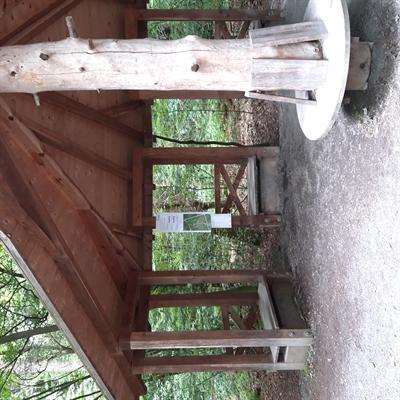 ©  - 210721_Sommerrallye - Arboretum