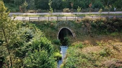 Hochwasserschutz Edelbach